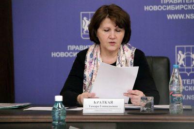 Доходы главы новосибирского горизбиркома в 2016 году снизились на 700 тысяч рублей