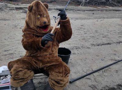 Медведь поймал четыре налима на берегу Обского моря