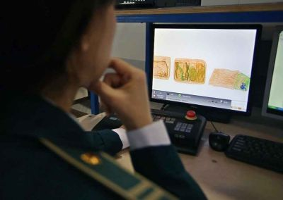 В Новосибирске введен карантин со всеми странами Юго-Восточной Азии