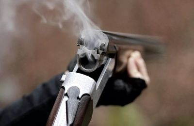 Мужчина обстрелял квартиру тещи под Новосибирском