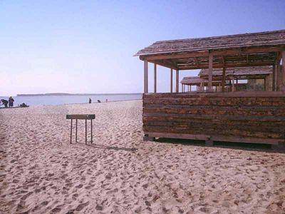 Пляж Академгородка стал свалкой