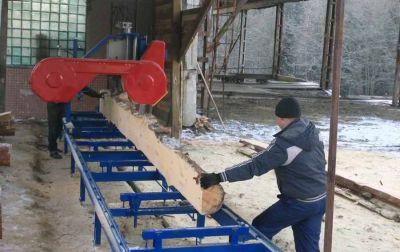 Новосибирец сдал на пилораму деревья на 29 миллионов рублей