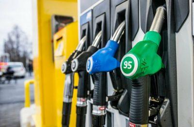 Самый популярный бензин резко подорожал в Новосибирске