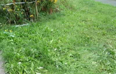 На Затулинке 5-летний мальчик упал с 4 этажа на траву