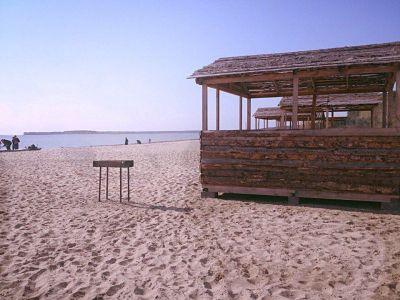 СО РАН передаст Новосибирску пляж в Академгородке