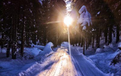 Поехавший зимой на дачу новосибирец найден мертвым