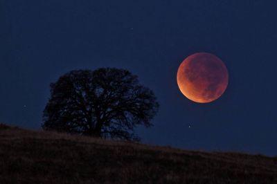 Конкурс на лучший снимок лунного затмения объявлен в Новосибирске