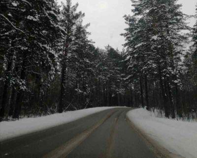 Погода в Новосибирске на первую рабочую неделю января: прогноз синоптиков