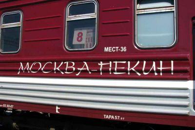Опасный вирус: в Новосибирске обыскали поезд Пекин – Москва