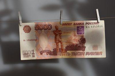 Названо число новосибирских семей, кому положены новогодние пять тысяч