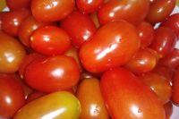Огурцы и помидоры подорожали на десятки процентов в Новосибирской области