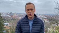 «Немедленно освободить»: Евросовет про задержание Навального