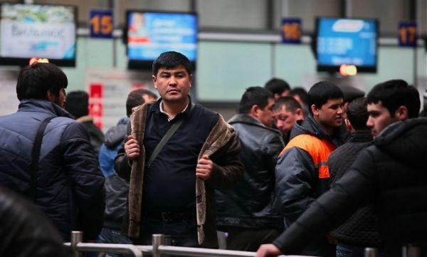 Мигрантам запретили рыбачить, водить автобусы и работать с детьми в Новосибирске