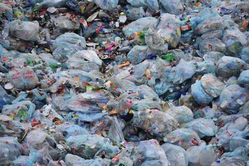 Мэрия спрашивает новосибирцев — что изменила «мусорная» реформа