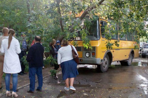 Школьный автобус снес дерево на подъезде к поликлинике в Новосибирске