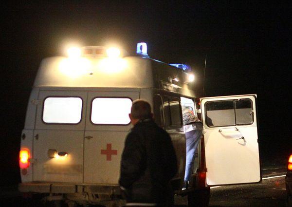 Пенсионеры и их внучка разбились в ДТП со стоящим КамАЗом на трассе под Новосибирском