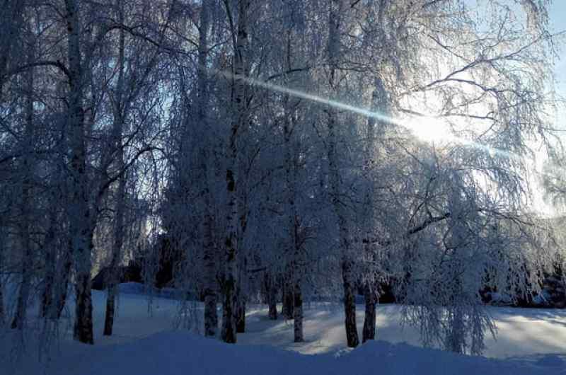 Морозы до -25 задержатся в Новосибирской области