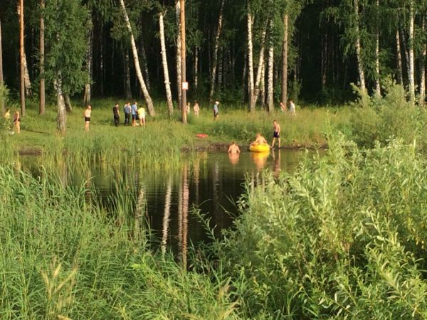 Парень утонул на озере в Сосновом бору Новосибирска